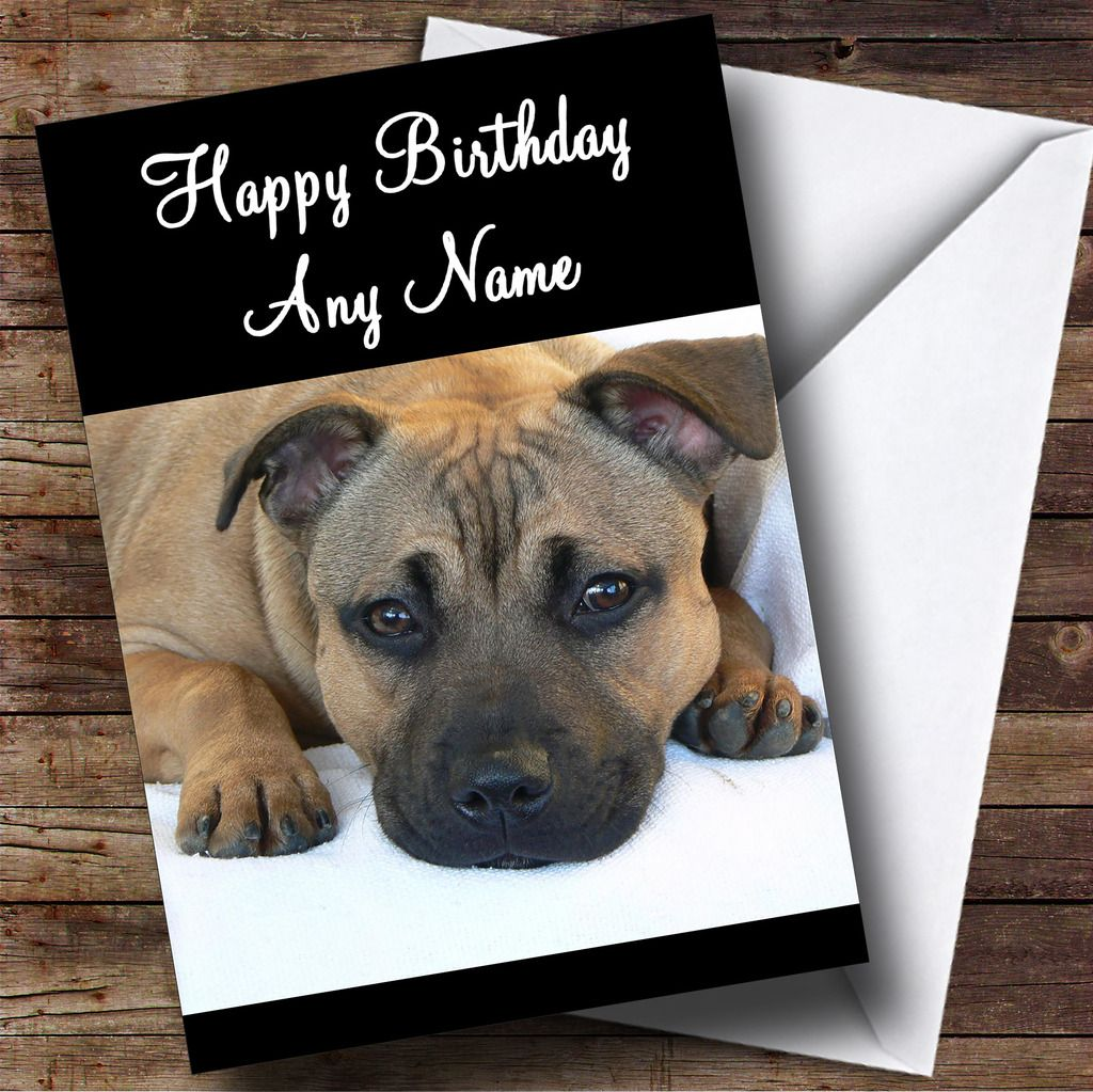 Animal Themed Personalized Birthday Card Many Designs Fully
