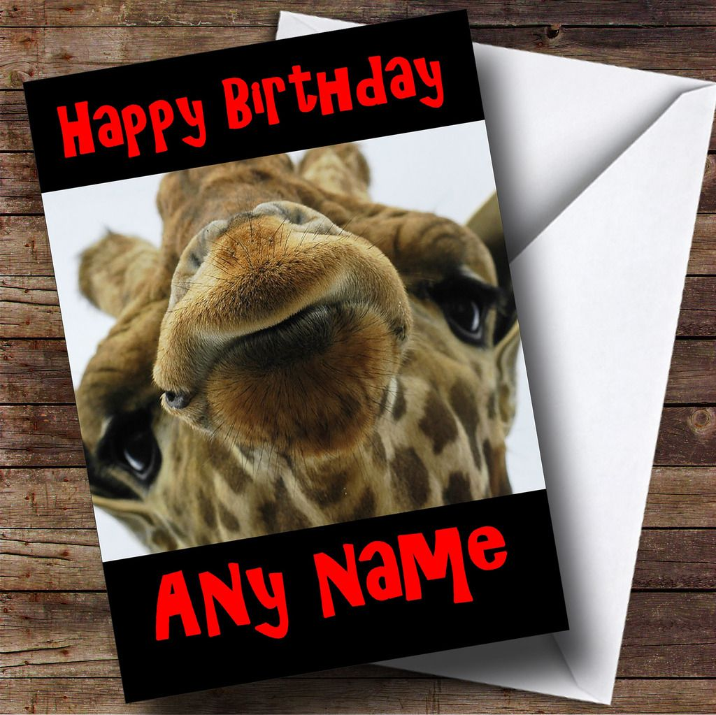 Animal-Personalized-Birthday-Greeting-Card-Lots-Of-Designs-To-Choose-From miniature 158
